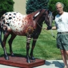 "Loran working on ""Horse with No Name�"