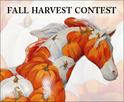 Fall Harvest Contest